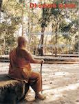 dhamma inside 21